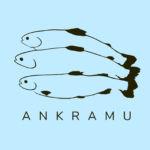 ankramu-tricko