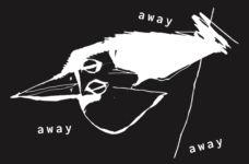 away bird